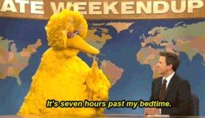 Big-Bird-Past-My-Bedtime-Weekend-Update
